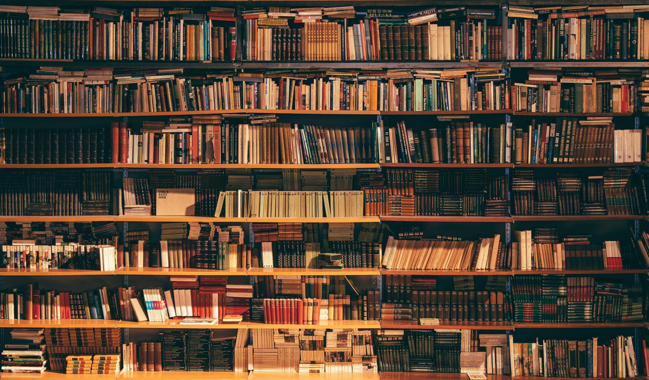 Das Geheimnis um die verschwundenen Bücher | Für Pädagog*innen